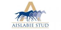 Aisable360x180mini